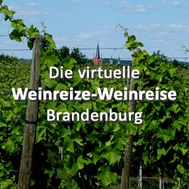Die virtuelle Weinreize-Weinreise (Folge 17: Brandenburg)