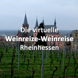 Die virtuelle Weinreize-Weinreise (Folge 22: Rheinhessen)