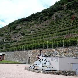 Società Agricola ARPEPE (Sondrio) - Valtellina