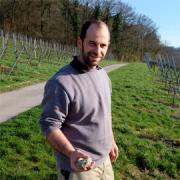 Weingut GravinO, Kürnbach im Kraichgau