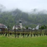Weingut Thomas Marugg (Fläsch, Kanton Graubünden) - Bündner Herrschaft