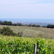 Italien - Colli di Rimini